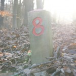 alles andere: Number eight